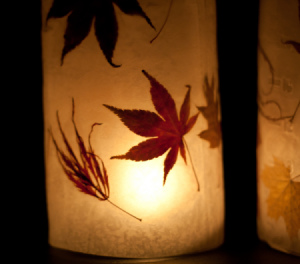 closeup_of_autumn_lanterns_s