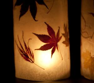 closeup_of_autumn_lanterns_s