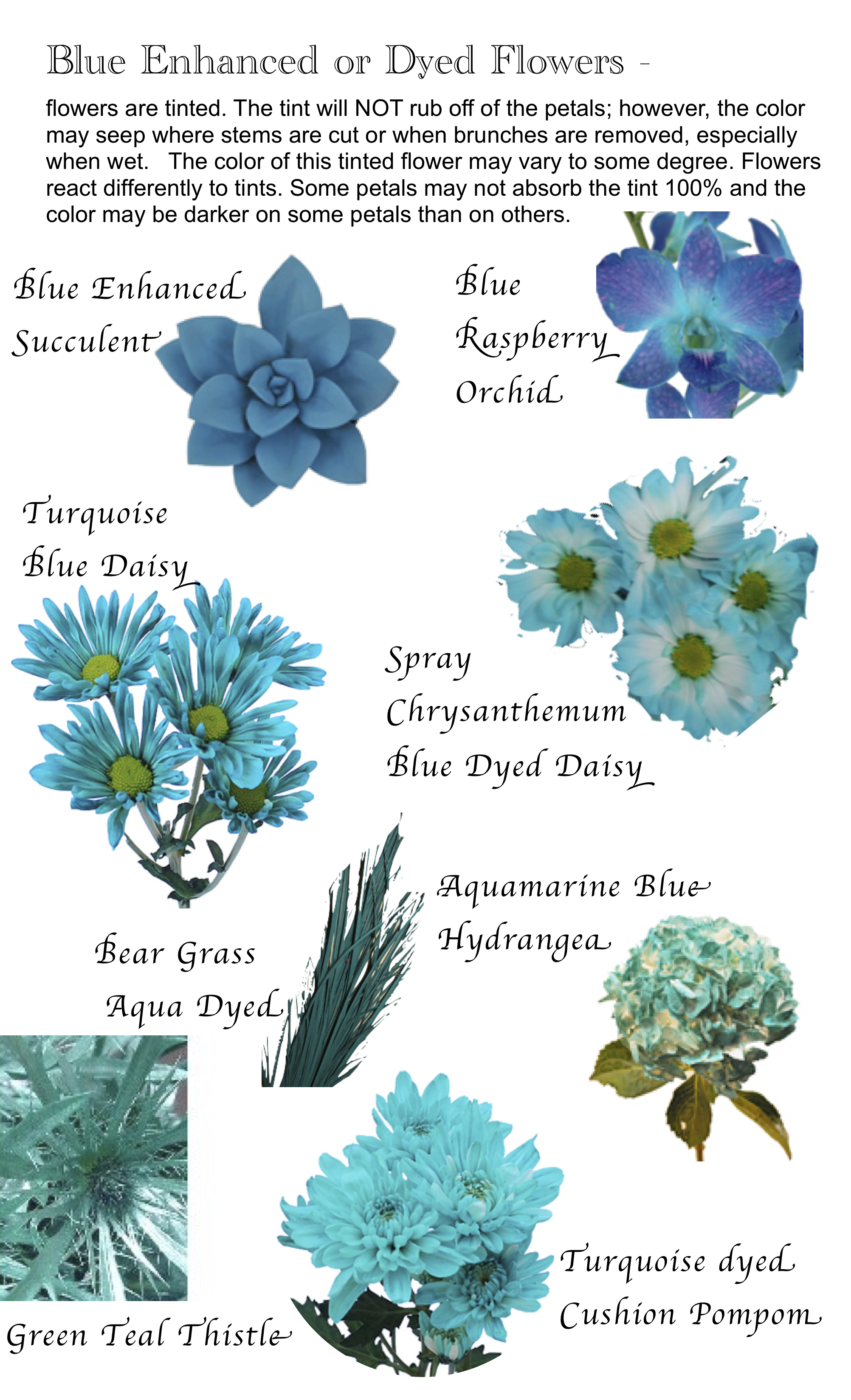 flower names by color  hayley's wedding tips, Beautiful flower